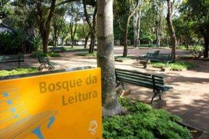 bosque_da_leitura-450x299
